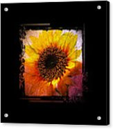 Sunflower Sunset - Art Nouveau  Acrylic Print