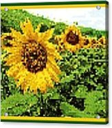 Sunflower Tapestry Acrylic Print