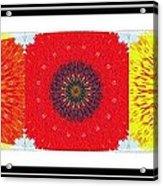 Sunflower Trio - Triptych - Flowers Acrylic Print