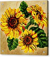 Sunflowers On Wooden Board Acrylic Print