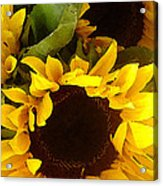 Sunflowers Tall Acrylic Print