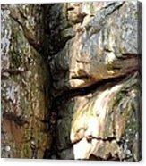 Sunlit Boulder On Shades Mountain Acrylic Print