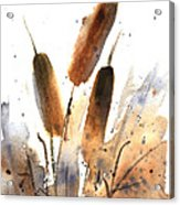 Sunlit Cattails Acrylic Print by Vickie Sue Cheek