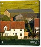Sunlit Farm Acrylic Print