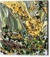 Sunlit Marsh Acrylic Print