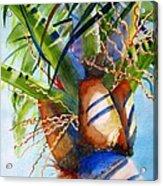 Sunlit Palm Acrylic Print
