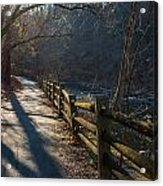 Sunlit Path Acrylic Print