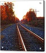 Sunlit Tracks Acrylic Print
