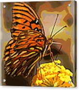 Sunlite Orange Butterfly Acrylic Print