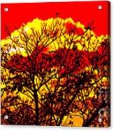 Sunnsett Acrylic Print