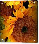 Sunny Easter Bouquet Acrylic Print