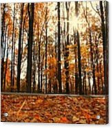 Sunny Fall Day Acrylic Print by Candice Trimble