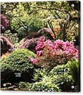 Sunny Japanese Garden Acrylic Print