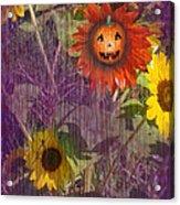 Sunny Pumpkin Acrylic Print