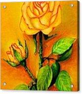 Sunny Rose Acrylic Print