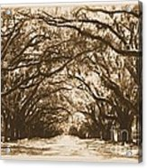 Sunny Southern Day With Old World Framing Acrylic Print