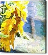 Sunnyabstracted Acrylic Print