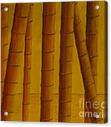 Sunrise At Bamboo Grove Acrylic Print