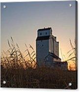 Grain Elevator At Sunrise Acrylic Print