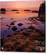 Sunrise At Tenants Harbor Acrylic Print