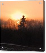 Sunrise At Willow Pond Acrylic Print