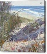 Sunrise Beach Dunes Sunshine Coast Qld Australia Acrylic Print