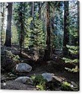 Sunrise Creek Acrylic Print