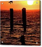 Sunrise Descent - Outer Banks Ocracoke Acrylic Print