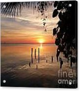 Sunrise Hang Acrylic Print