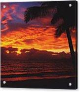 Sunrise In Queensland 2 Acrylic Print