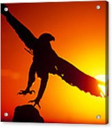 Sunrise Liftoff Golden Eagle Threatened Species Acrylic Print