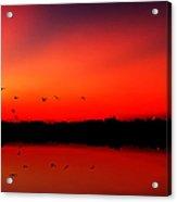 Sunrise On A Loch Acrylic Print