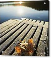 Sunrise Over Leaf On Floating Dock In Acrylic Print