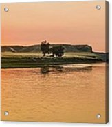Sunrise Over The Missouri Breaks Acrylic Print
