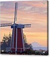 Sunrise Over Wooden Shoe Tulip Farm And Acrylic Print