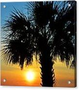 Sunrise  Palm Tree Acrylic Print