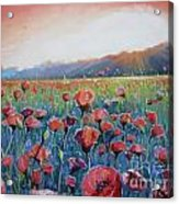 Sunrise Poppies Acrylic Print by Andrei Attila Mezei