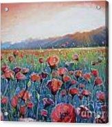 Sunrise Poppies Acrylic Print
