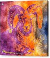 Sunrise Ram Water Color Acrylic Print