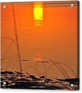 Sunrise Reflection Acrylic Print