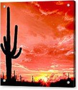 Sunrise Saguaro National Park Acrylic Print