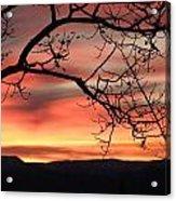 Sunrise Sonata Acrylic Print