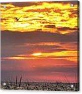 Sunrise Through The Grass Acrylic Print