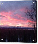 Sunrise With Tree Acrylic Print