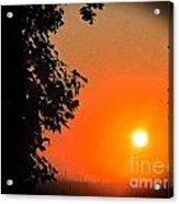 Sunset 365 18 Acrylic Print
