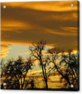 Sunset 7 Acrylic Print