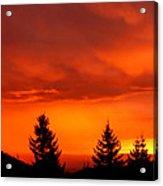 Sunset And Fir Trees Acrylic Print