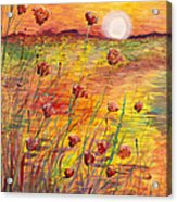 Sunset and Poppies Acrylic Print