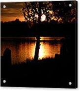 Sunset And Tree Acrylic Print