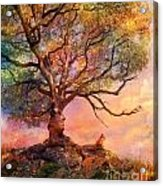 Sunset At Fox Mountain Acrylic Print
